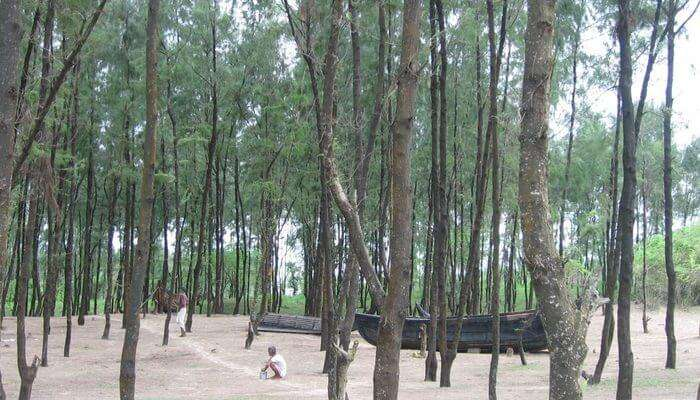 Jagatsinghpur