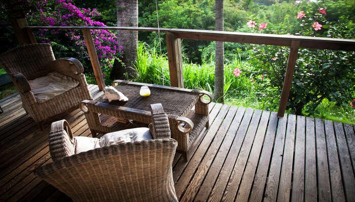 Jungle Lodges and Resorts