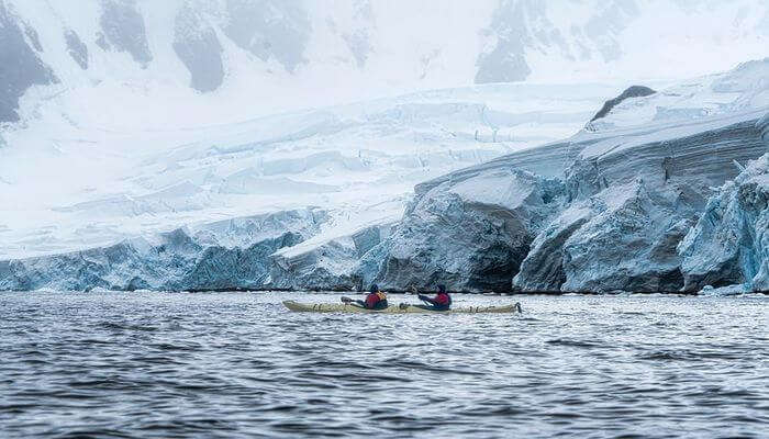 Kayak With Whales - Peaceful Expeditions