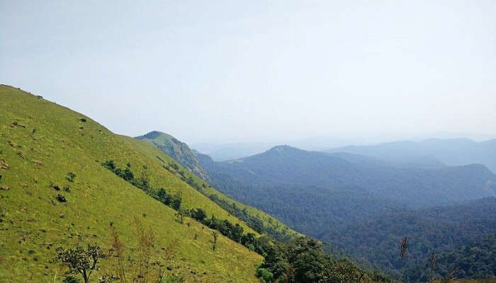 Kodachadri Mountains