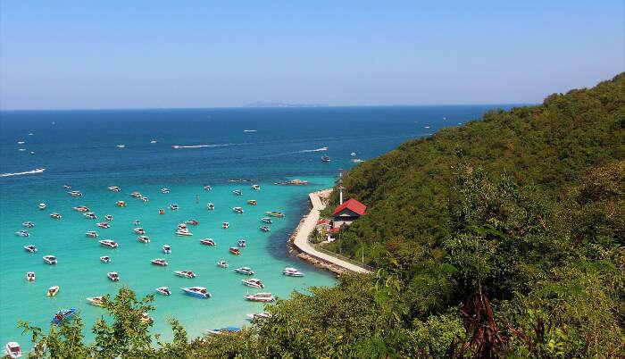 Koh Larn Coral Island in Pattaya