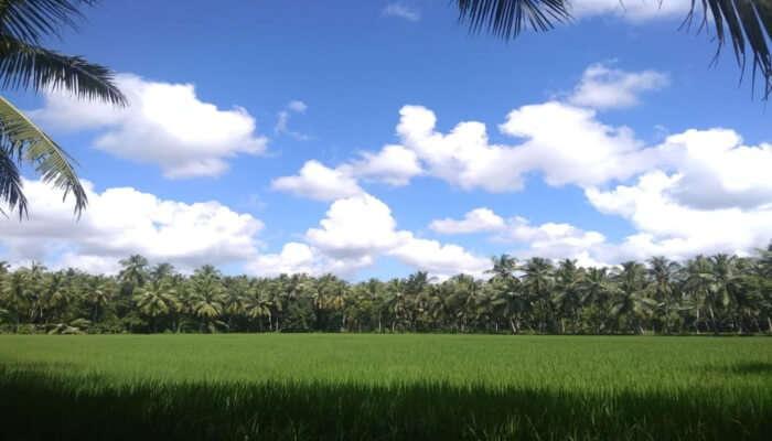 Beautiful Konaseema