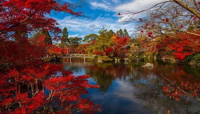 Kyoto – Sacred and Serene