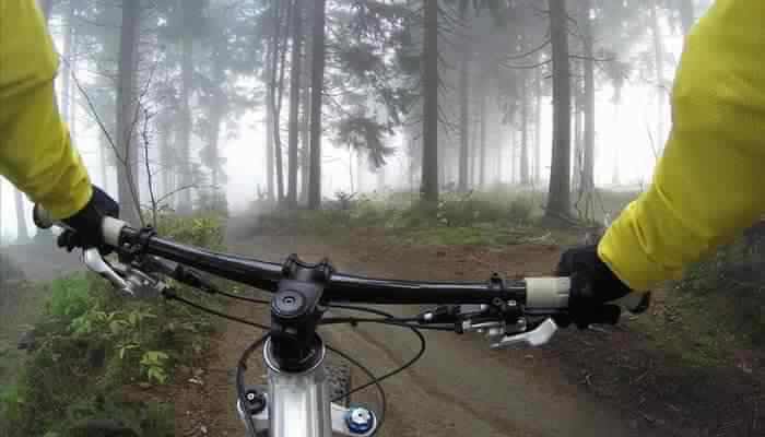 Little Mountain Park: Go Biking!