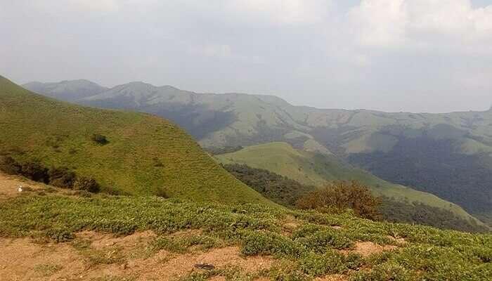 Mandalpatti hills