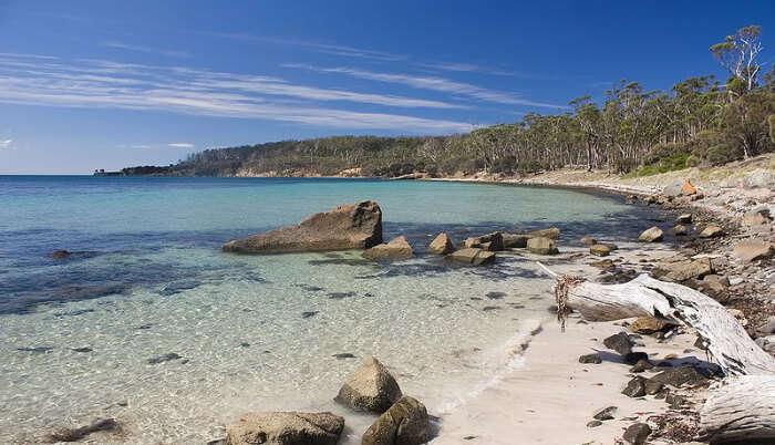 Maria Island in Tasmania
