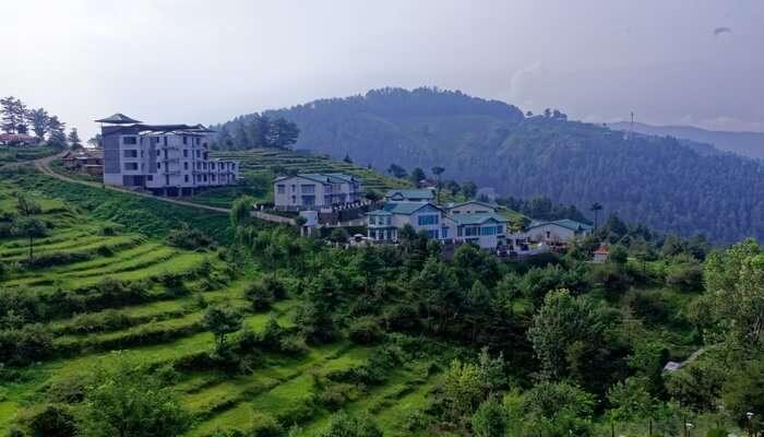 Mashobra hills