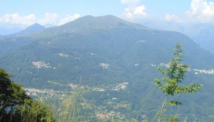 Monte Hill