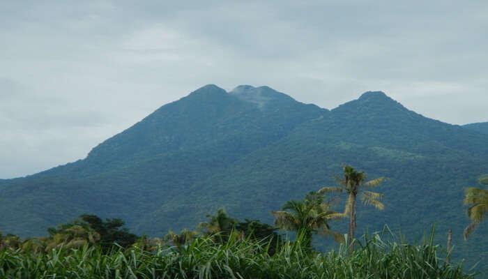 Mount Makiling in Laguna