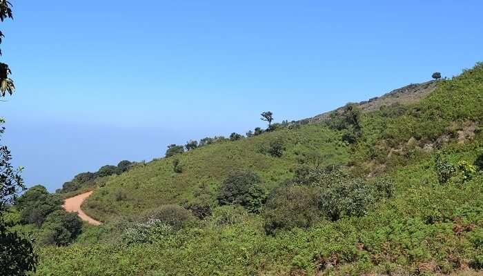 Mullayanagiri Peak