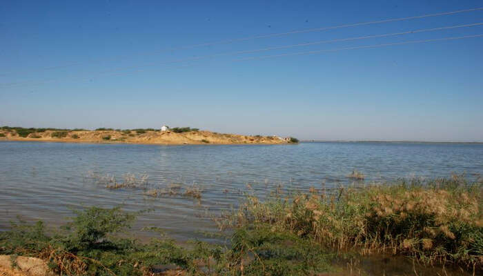 Narayan Sarovar Sanctuary in Gujarat