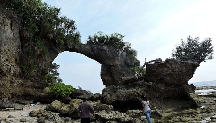 Brtidge at neil island, Andaman