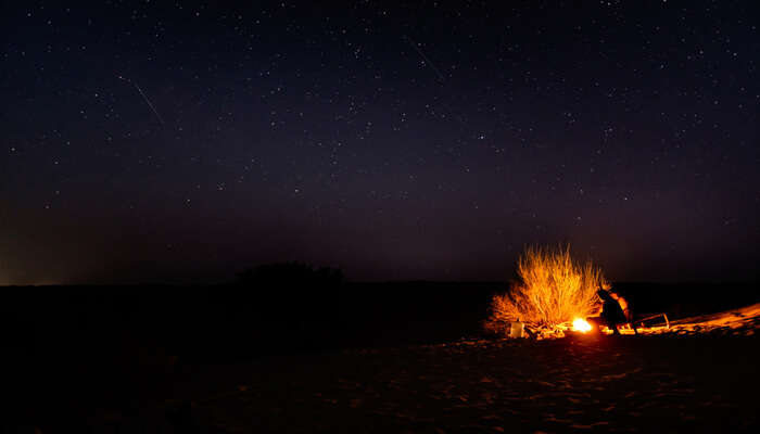 Night Camping In Ranthambore National Park