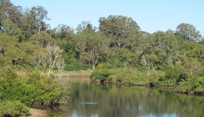 relatively smaller river