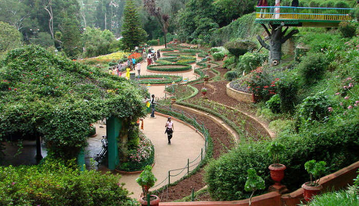 View of Ooty Botanical Garden