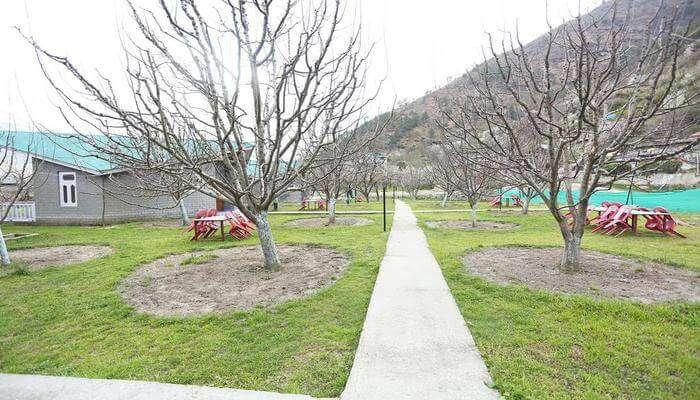 Orchard Resorts Kullu
