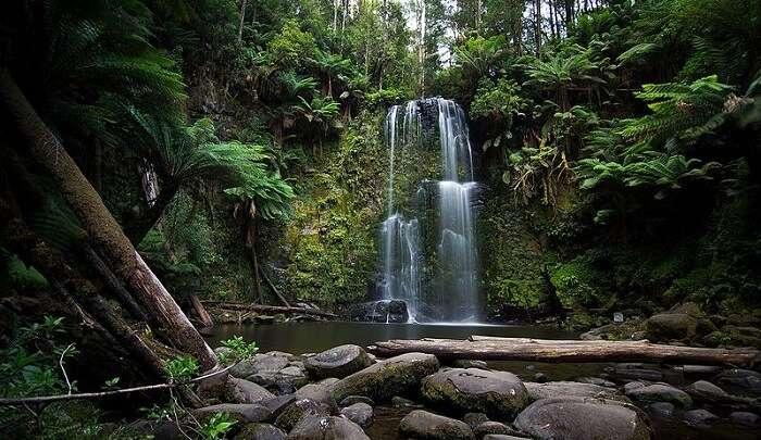 natural waterfall view