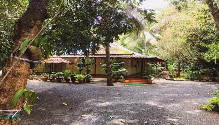 Palm-Grove Service Villa