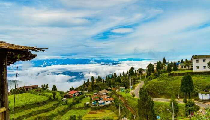 Places to Visit in Darjeeling in June