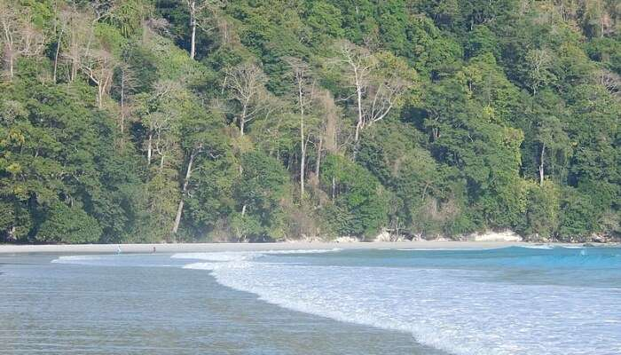 Beachside view at Andaman