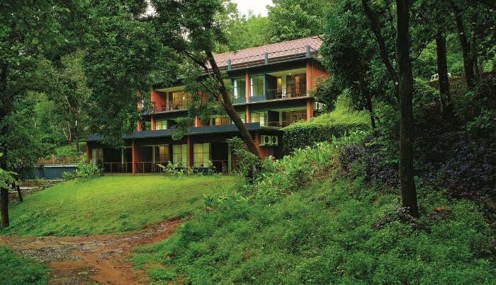 Rainforest Resort in Athirapally