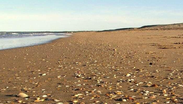 sand of a  beach