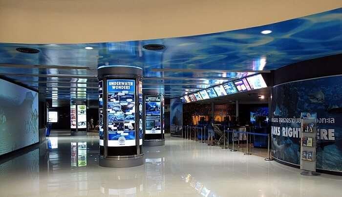aquarium view