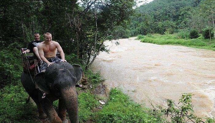 Seaview Elephant Camp