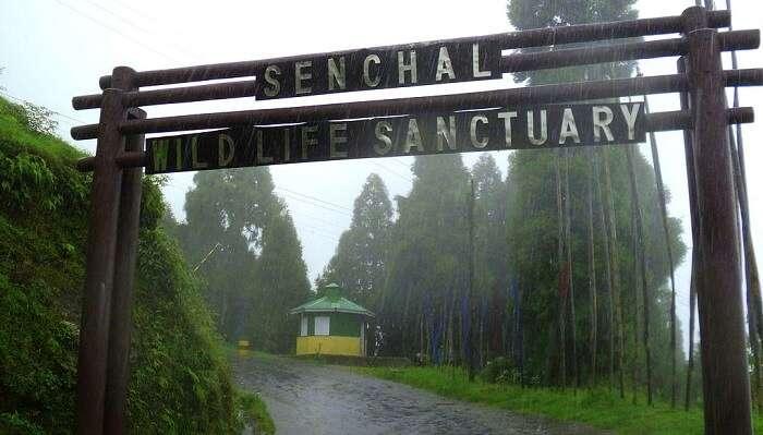 Senchal Lake & Wildlife Sanctuary