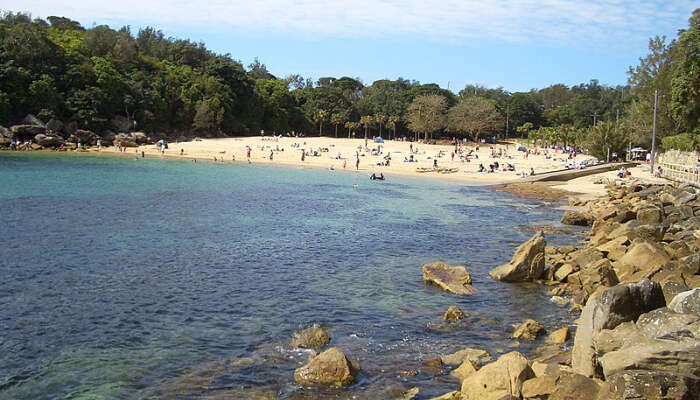 Shelly Beach In Sydney