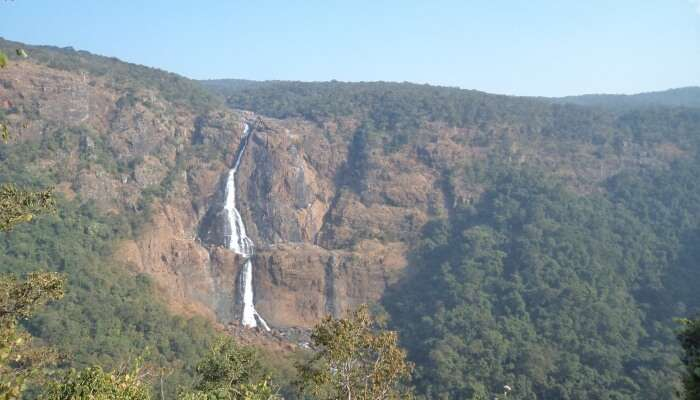 Offering views of lush green forests, gorgeous waterfalls