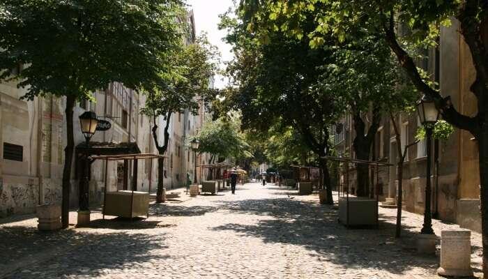 Real spirit of Belgrade