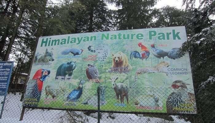 The Himalayan Nature Park, Kufri