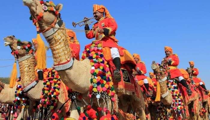 Summer Festival Dive Into Culture