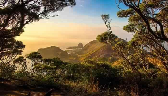 The Cape Schanck