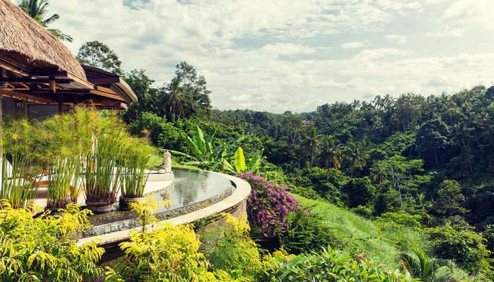 The Thash Resort