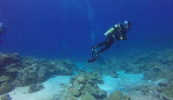 snorkeling with Tusa Dive