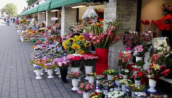 Uplift Your Mood At Flower Market