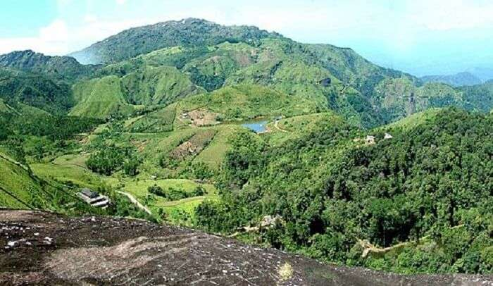 hill covered with extensive greenery