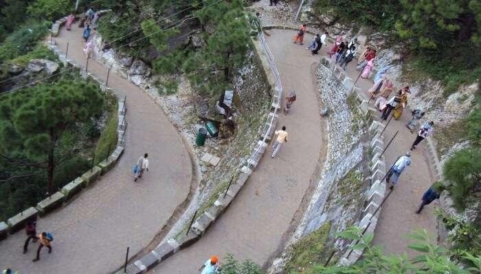 trek trail of vaishno devi
