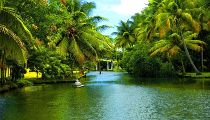 back water kerala