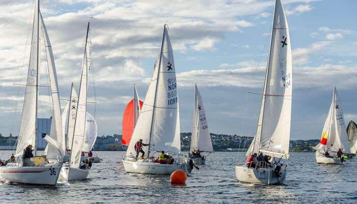 Watch Or Participate In A Yacht Race