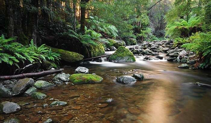 canyoning trip in Australia
