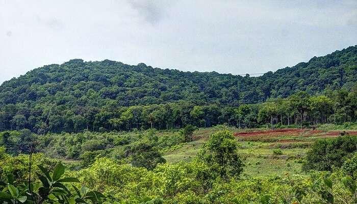 lambasingi hills andhra