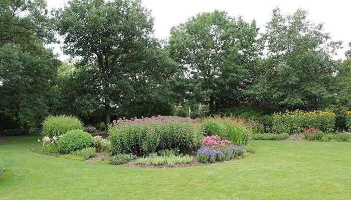 horticulture garden