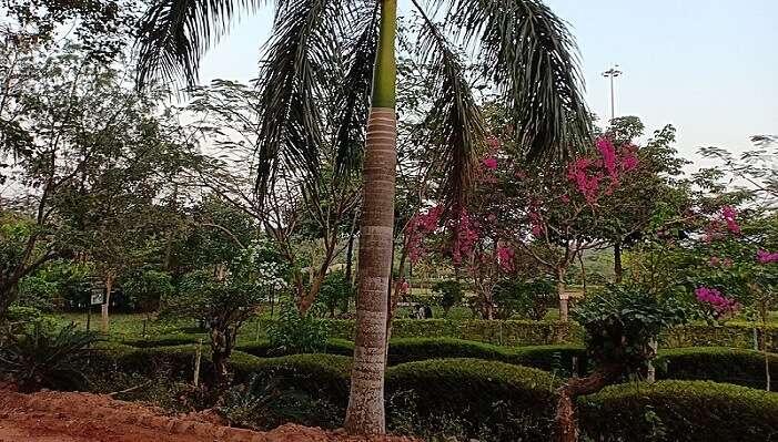 kadri park mangalore