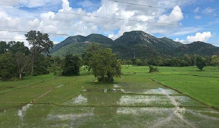 ritigala mountain