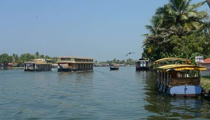 Backwater Tours Duration Via Different Modes Of Transport