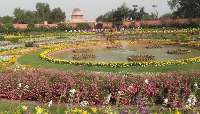 explore the beauty of the Mughal Garden