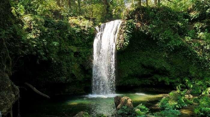 Waterfalls near Ramnagar